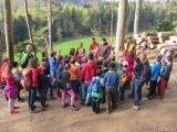 Arbeitseinsatz im Wald 22.04.2016